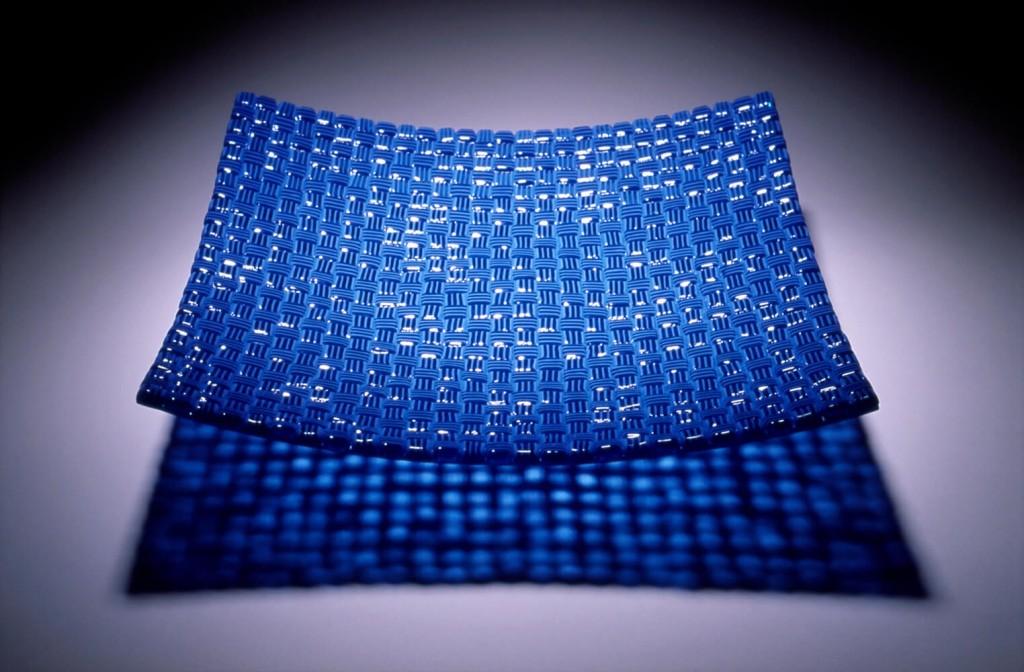 Blueberry_15_1000htpj