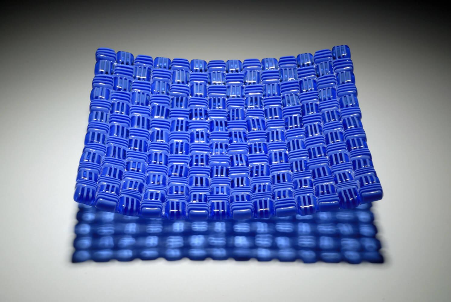 Blueberry_8_1000htpj